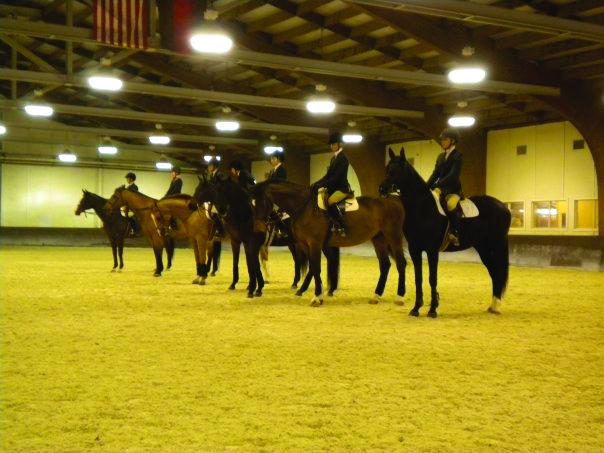 2010-world-equestrian-games