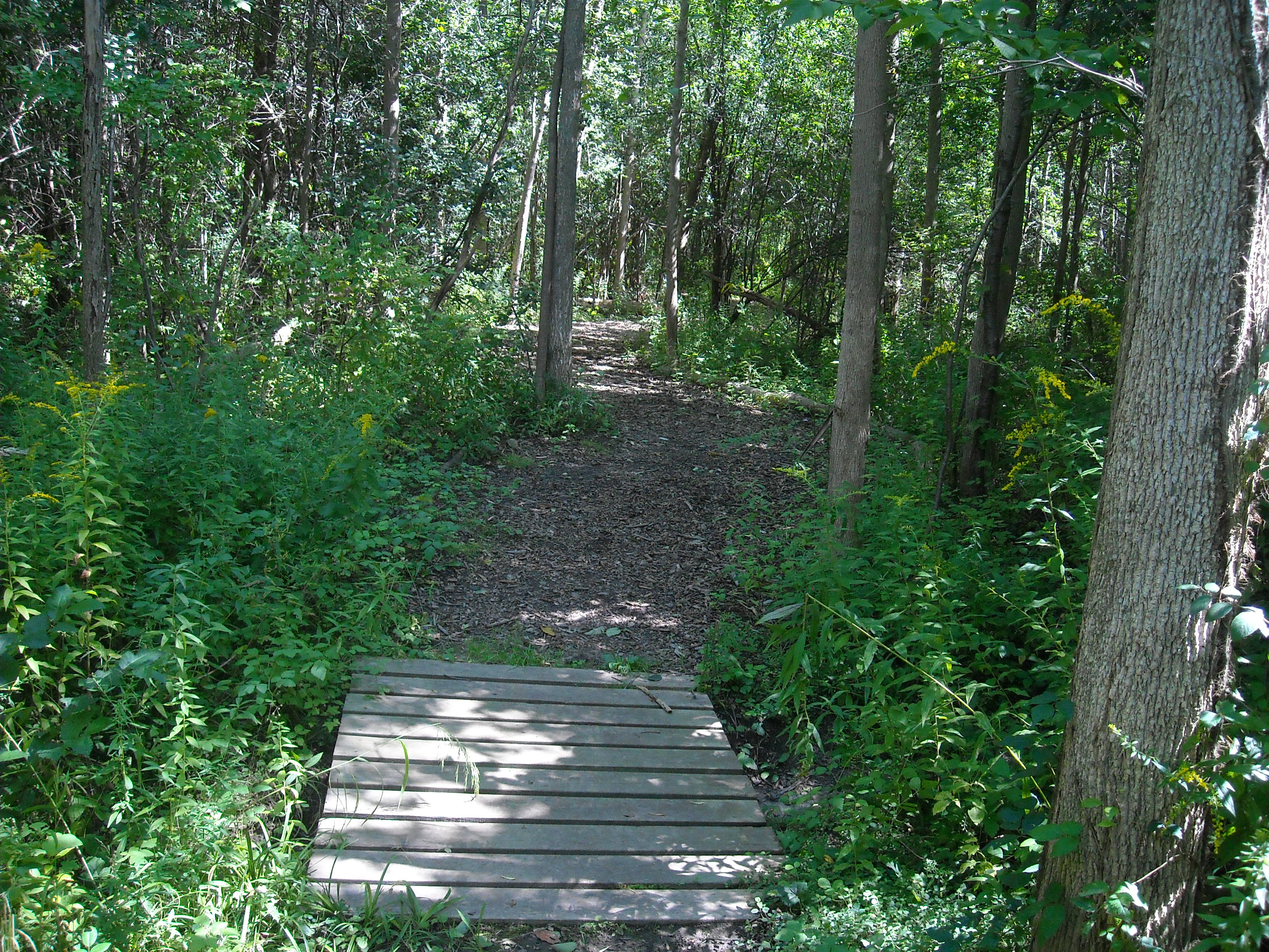 Rice Creek Hiking Trails