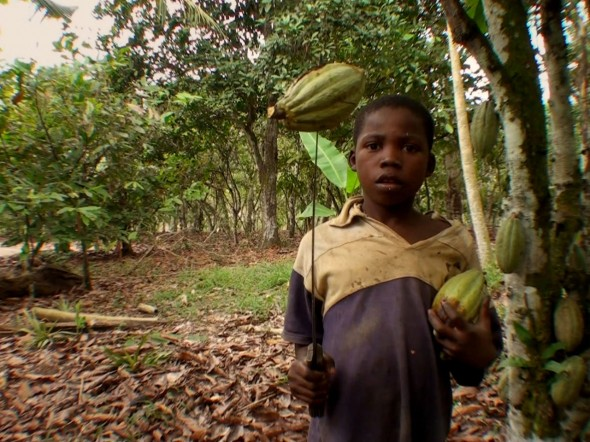 "Directed by U Roberto Romano, ""The Dark Side of Chocolate"" unveils the kidnapping and child labor involved in the cocoa plantations in Africa.  (Photo provided by thedarksideofchocolate.org)"