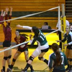 Volleyball comes up short in home opener