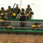 Women's ice hockey club makes lasting memories