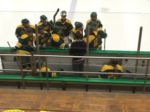The Oswego State women's ice hockey club team was filled with much chemistry between one another. (Photo Provided by Ally Roberts)