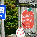 15th annual Fall Jamboree celebrated at Ontario Orchards for students, community