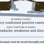 Bats carrying rabies discovered in county