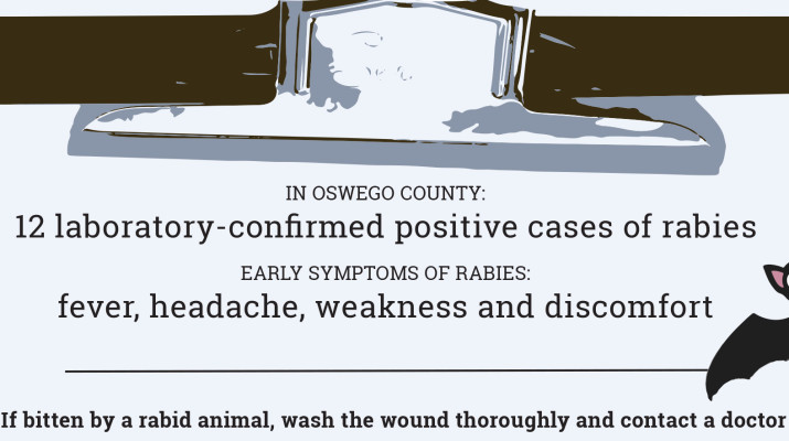 rabies_Graphic