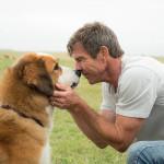 'A Dog's Purpose,' predictable, compassionate, heartfelt