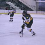 Laker Gameday Preview: Women's hockey vs. SUNY Cortland